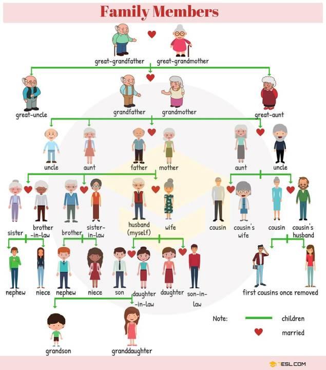 Miembros de la familia en inglés