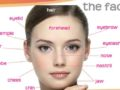 Partes de la cara en inglés